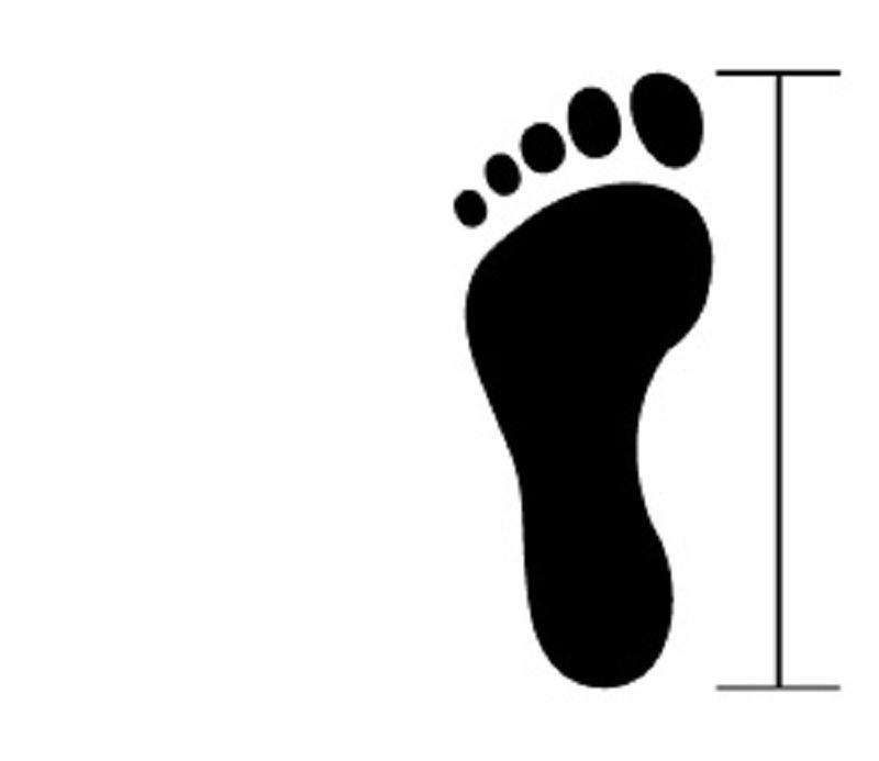 Clip Shoes Size Chart
